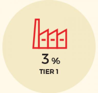 icon-tier1